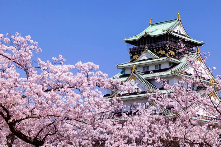 Prévisions Sakura 2020 Osaka