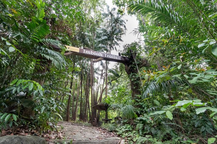 Sentosa Imbiah Trail