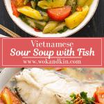 Soupe aigre vietnamienne dans un bol sous le même plat.