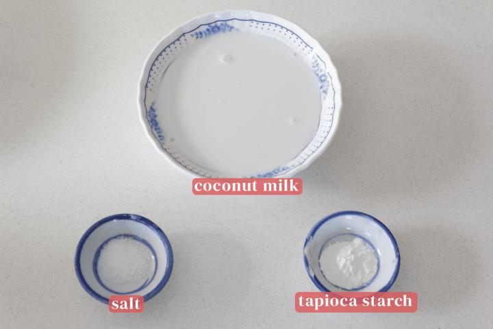 Lait de coco dans un bol avec du sel et de l'amidon de tapioca dans les plats.