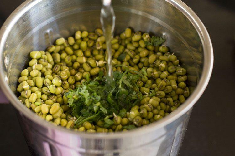 ajouter de l'eau dans le bol du mélangeur rempli de moong et de coriandre trempés